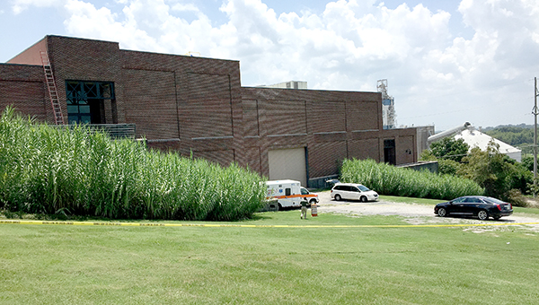 A contractor reportedly fell to his death Tuesday while working on top of the Vicksburg Convention Center -- John Surratt